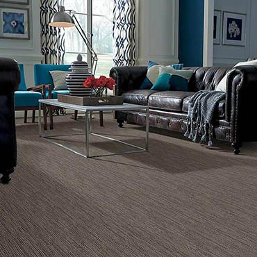 Anso® Nylon Carpet | South Daytona, FL
